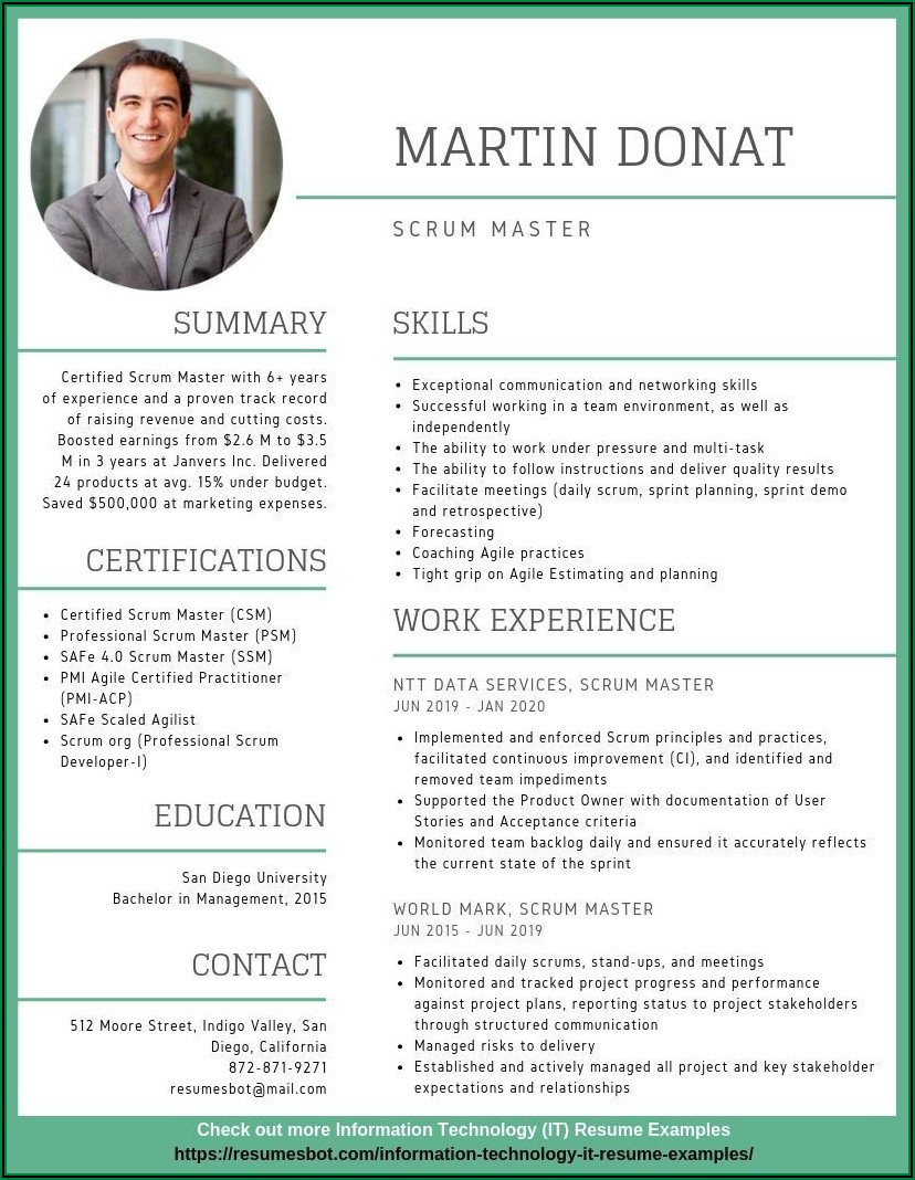 Samples Of Professional Resumes