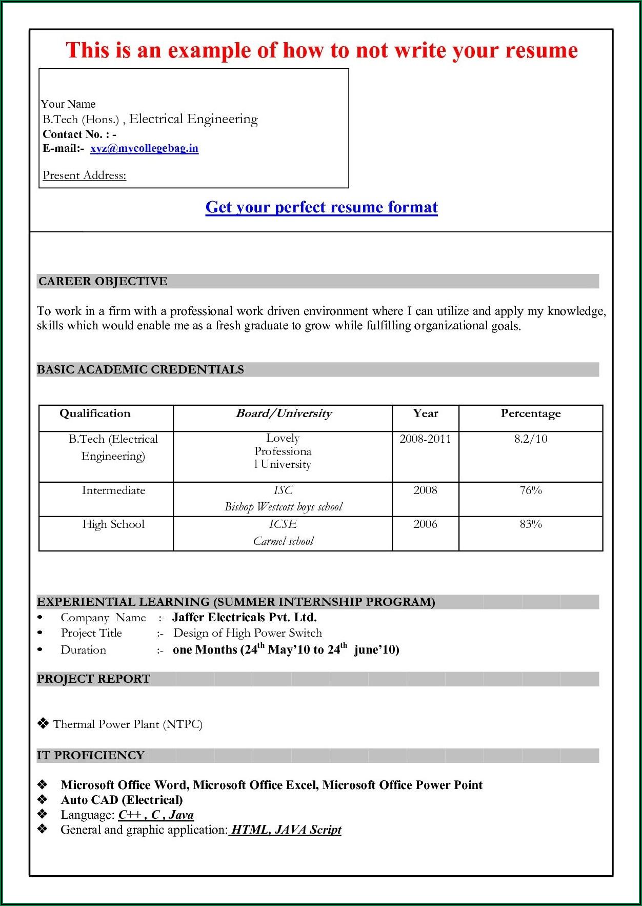 Simple Resume Format Word File Download